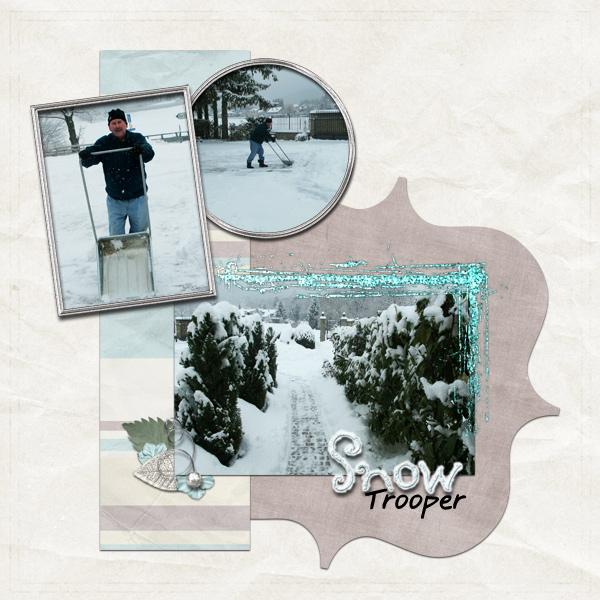 SnowTrooperWeb